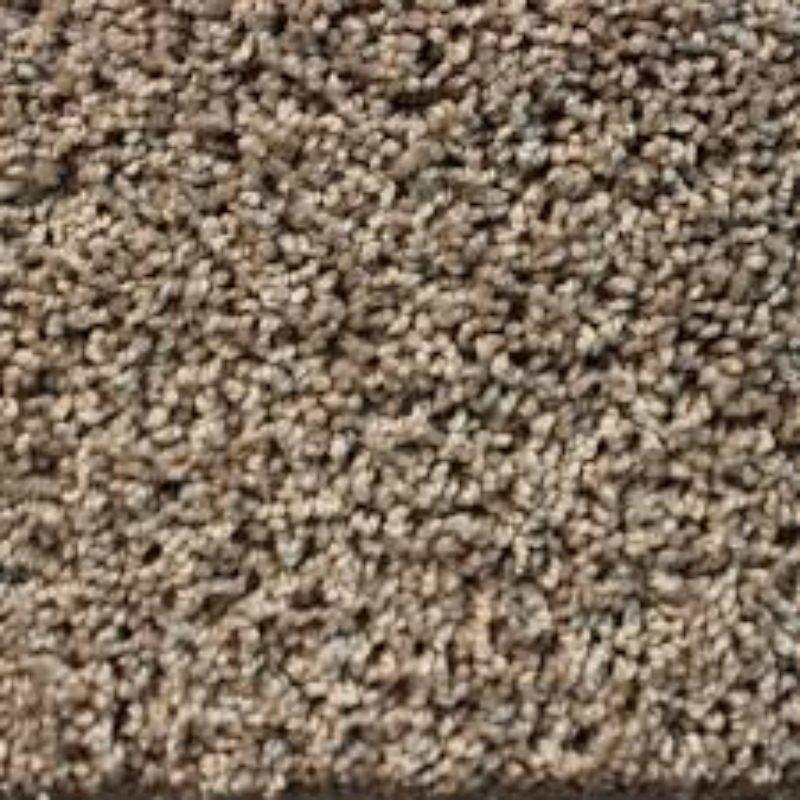 http://www.207marketing.com/sanflo/wp-content/uploads/2019/05/carpet-800x800.jpeg